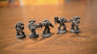 sternguard-veterans